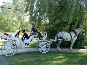 wedding6-1-08_135